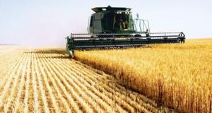 Roemenie verwacht een top jaar voor de agrarische sector