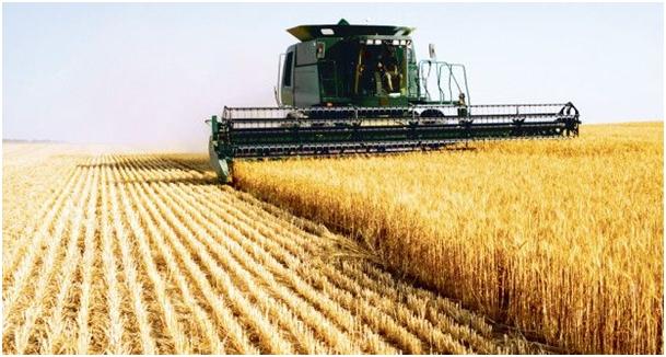 Roemeense regering verlaagt BTW in agrarische sector