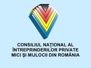 Bedrijfsleven in Roemenie komt met eigen verkiezingsprogramma