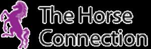 The Horse Connection – Een programma voor leiderschap