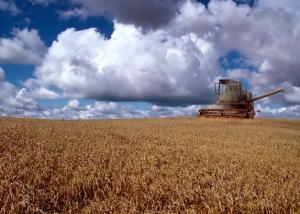 Wetsvoorstel beperking aankoop landbouwgrond door buitenlanders
