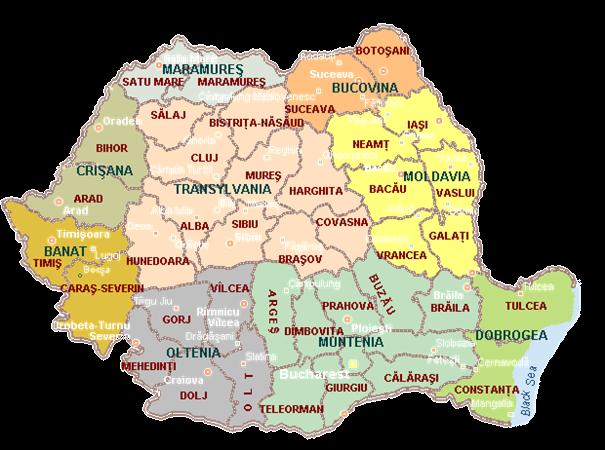 Roemeense bedrijven op achterstand bij promotie via internet