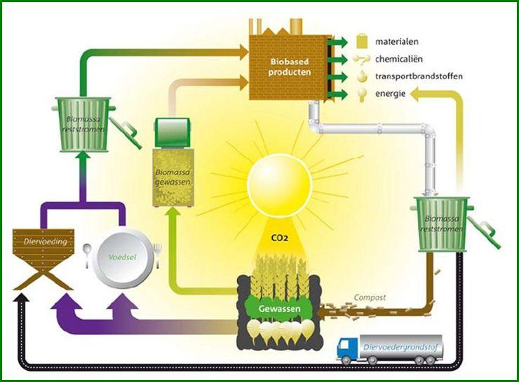 Wereld bio-energie 2014 matchmaking